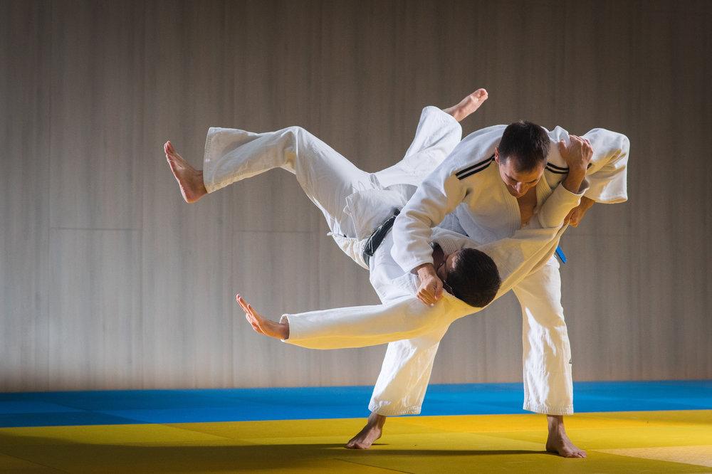 Brazilian jiu-jitsu and Self-defense Martial Arts