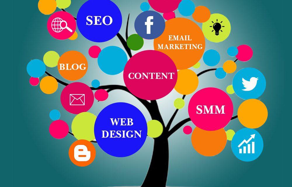 Web Placements